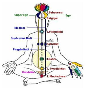 Subtle-energy-body-Prana